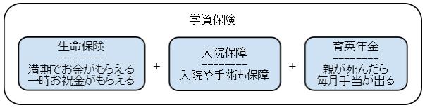 学資保険の構成